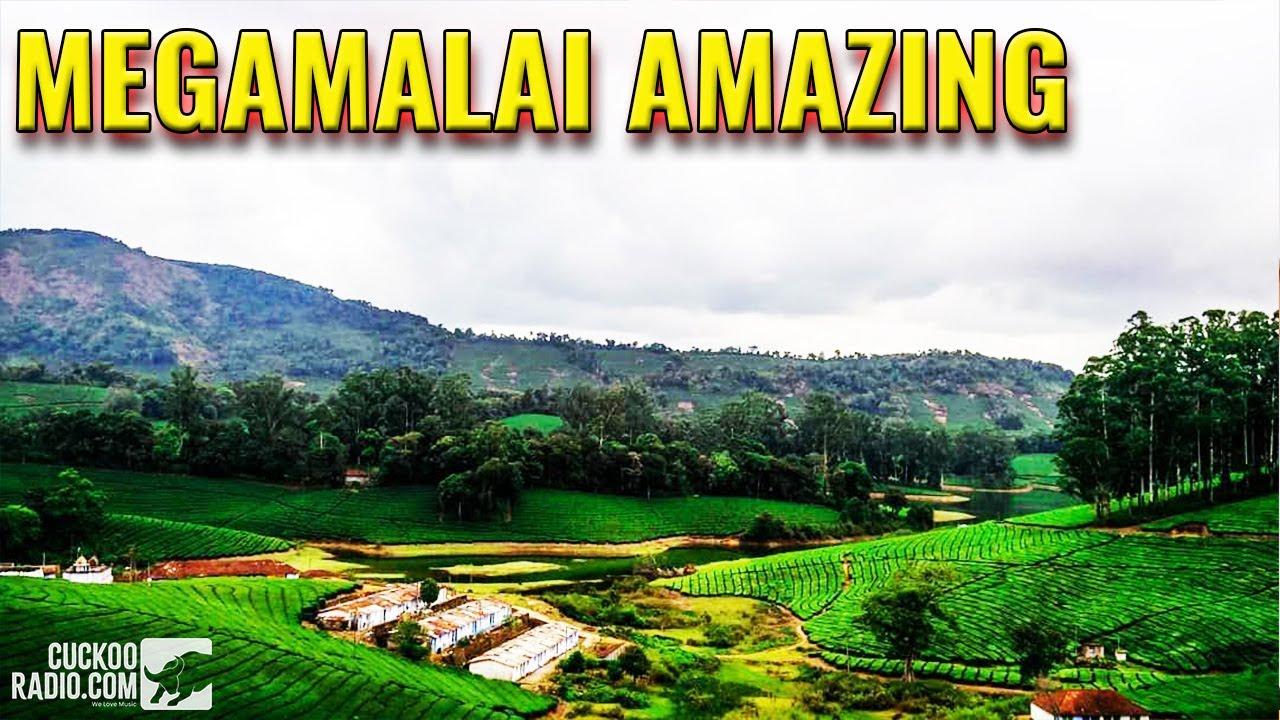 Meghamalai,High Wavy Mountains, Theni district